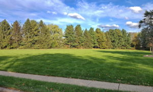 Large Field Park